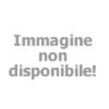 laid by the maid